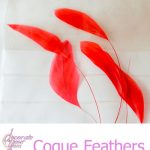 CoqueFeathers-Red