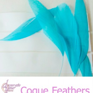 CoqueFeathers-Tropical-Seas